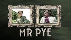 Mr Pye
