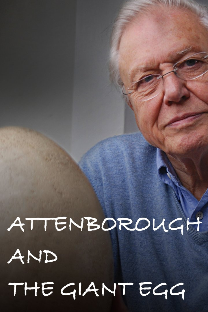 Attenborough and the Giant Egg on BritBox UK
