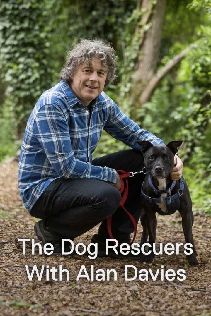 The Dog Rescuers with Alan Davies