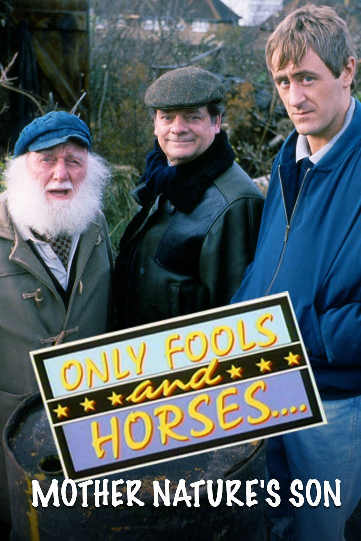 Only Fools And Horses: Special: Christmas 1992: Mother Nature's Son