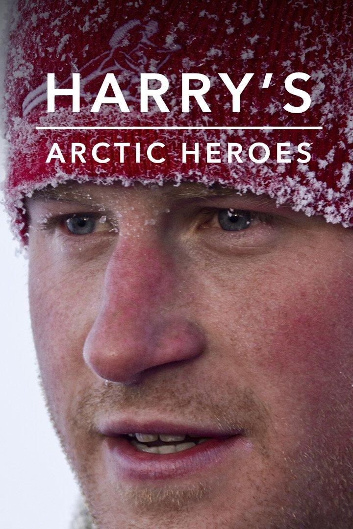 Harry's Arctic Heroes on BritBox UK