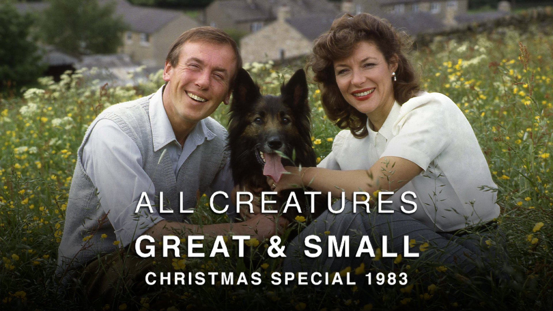All Creatures Great and Small Christmas Special 1983 on BritBox UK