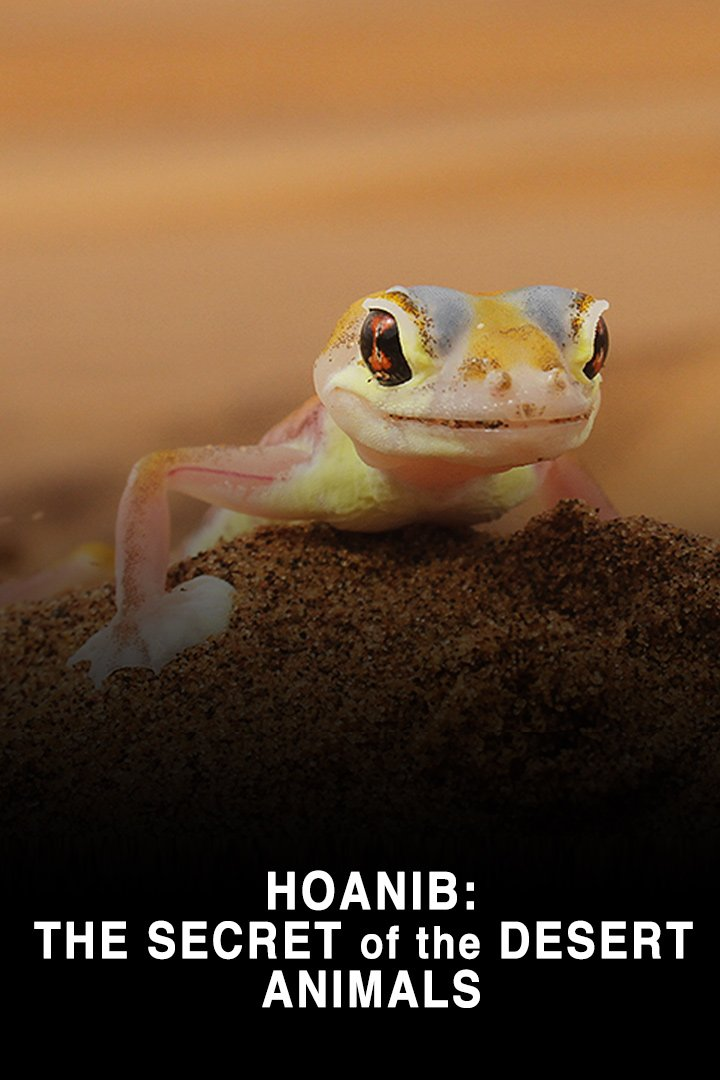 Hoanib: The Secret of the Desert Animals